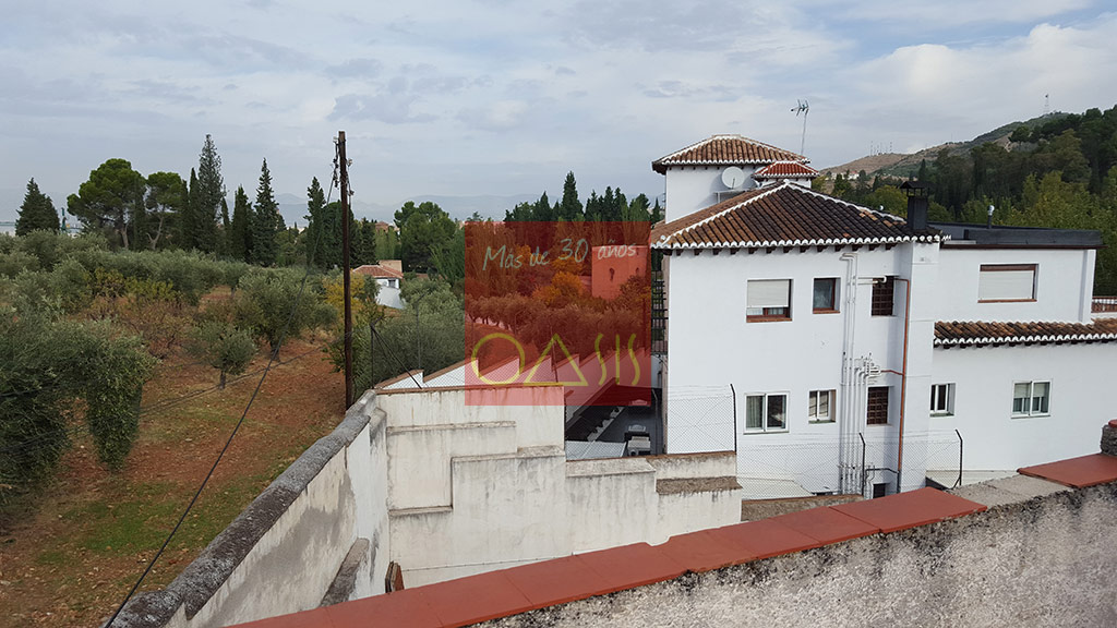 Excellent oportunity for investment near the entrance of the Alhambra - Outside view of the surroundings (Gardens of the Alhambra)